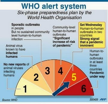 Swine flu - WHO alert system (AFP)