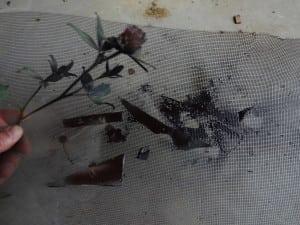 Firearm painting